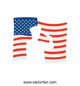 usa flag with silhouette of silhouette of patriotic soldier saluting