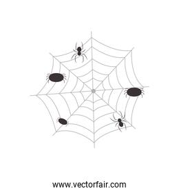 web with spiders, flat style