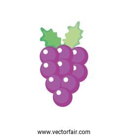 bunch of grapes icon, flat style