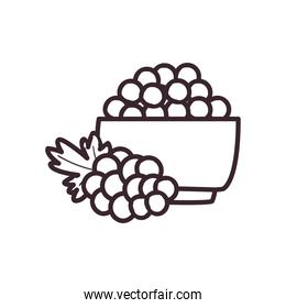 grapes fruit bowl line style icon vector design