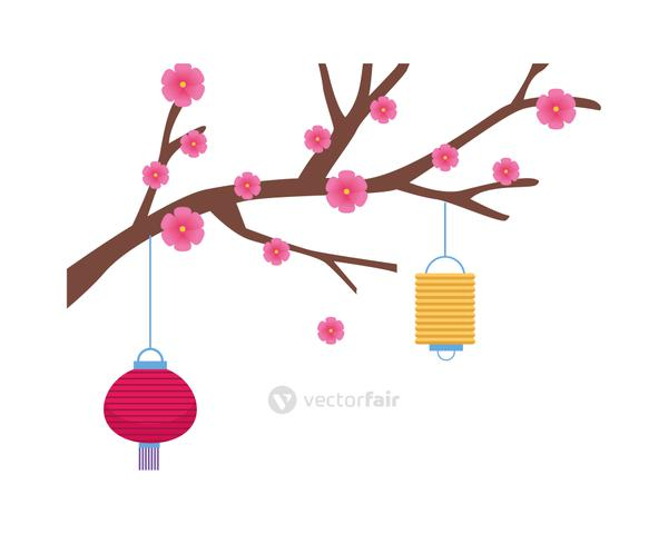 chinese paper lamps hanging in tree plant
