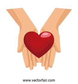 hands lifting heart love symbol isolated icon