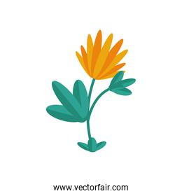 flower growth plant flat style icon