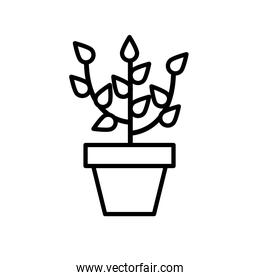 growth plant in ceramic pot line style icon