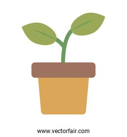 growth plant in ceramic pot flat style icon