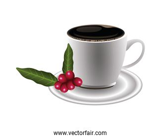 coffee plant grains and leafs with cup