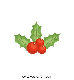 holly berry icon, colorful design