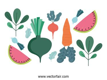 food nature fresh diet carrot onion radish watermelon and leaves