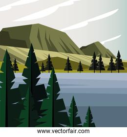 beautiful landcape scene with forest and lake