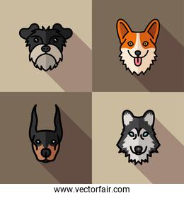 four dogs pets mascots breed characters