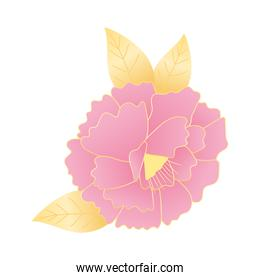 flower leaves nature decoration and ornament icon
