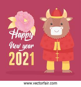 happy new year 2021 chinese, greeting card with ox and flower