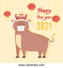 happy new year 2021 chinese, cartoon ox with decoration on head and lanterns