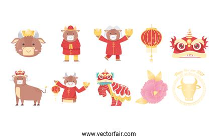 happy new year 2021 chinese, icons set with ox, flower, lantern, dragon and more