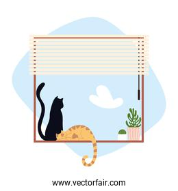 cats sitting on window with blinds and potted plant