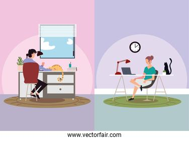indoor activities, man and woman working in laptop, stay at home