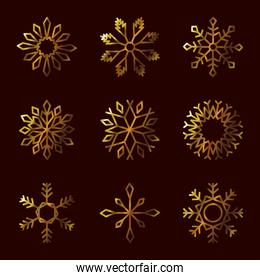 icon set of winter snowflakes, gradient style