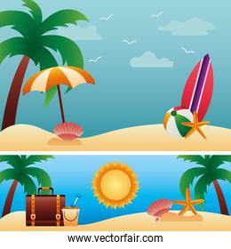 hello summer season with palms and set icons in beach scenes