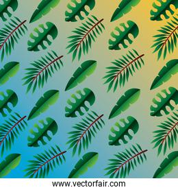 hello summer season with leafs palms pattern background