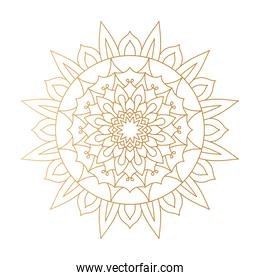 mandala in yellow flower shaped vector design