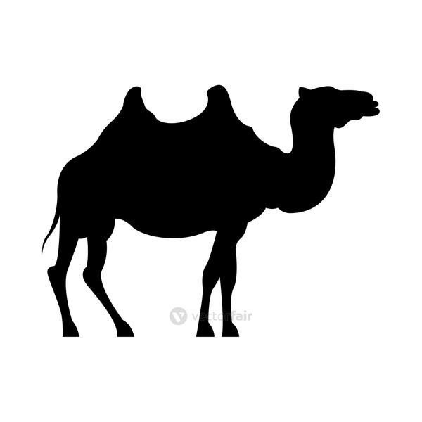 dromedary animal silhouette isolated icon