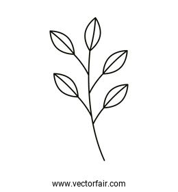 leaves line icon style, branch leaves nature