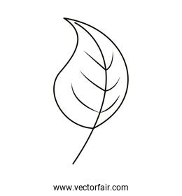 leaves line icon style, leaf foliage natural