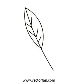 leaves line icon style, ecology leaf nature