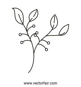 leaves line icon style, foliage branch berries nature