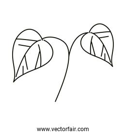 leaves line icon style, branch leaves decoration