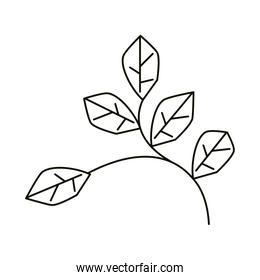 leaves line icon style, branch and leaves foliage