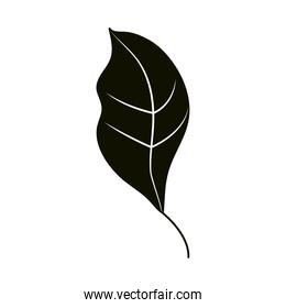 leaves silhouette icon style, leaf natural ecology