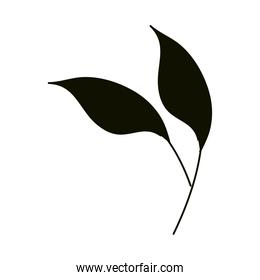 leaves silhouette icon style, foliage nature ecology