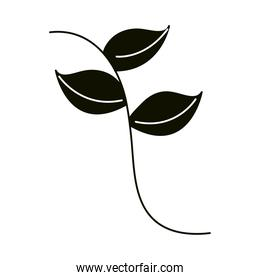 leaves silhouette icon style, stem leaves nature simple