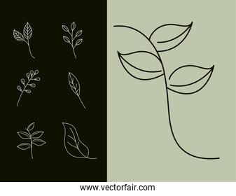 leaves line style, leaf natural branch set icons