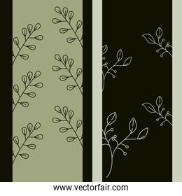 leaves line style, branches tree plant leaf natural background