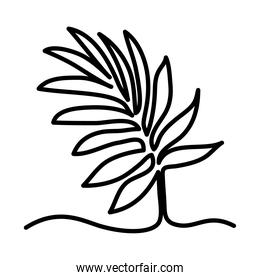 one line design of tropical leaf icon
