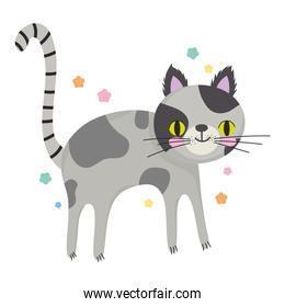 spotted cat pet cartoon animal white background