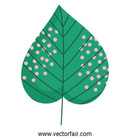 leaf nature foliage decoration dots icon on white background