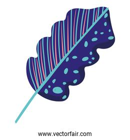 leaf foliage abstract texture blue decoration icon on white background