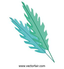 branch leaves exotic and tropical foliage icon on white background