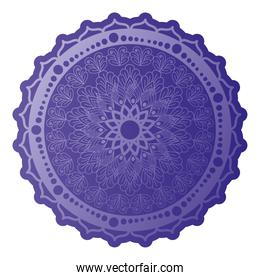 mandala of purple color with a white background