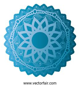 mandala of color blue with a white background