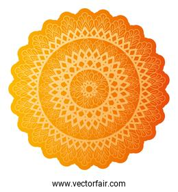 mandala of color orange tiger with a white background