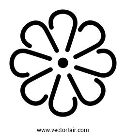 mexican flower icon on white background