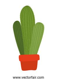 cactus of ligth green color icon on white background
