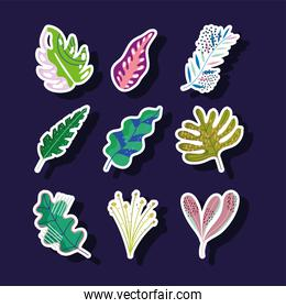 leaves foliage nature abstract decoration stickers icons set