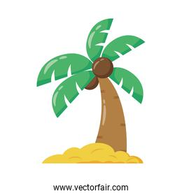 tropical tree palm flat style icon
