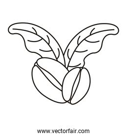 coffee seeds and leafs plant linear style icon