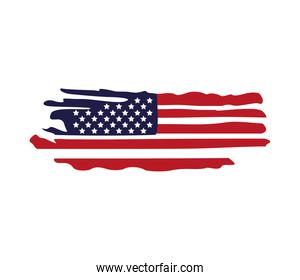 united states of america flag painted